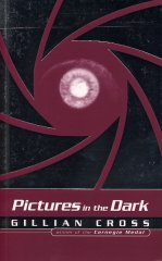Pictures in the Dark book cover