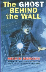 The Ghost Behind the Wall book cover