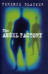 The Angel Factory book cover