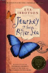 Journey to the River Sea book cover